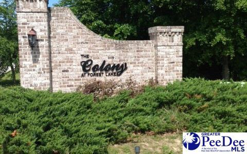 the colony at forest lake real estate homes for sale in florence rh florencehomesearch com