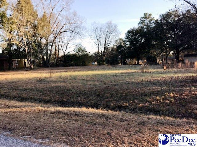 Dogwood Circle, Cheraw, SC 29520 (MLS #135051) :: RE/MAX Professionals