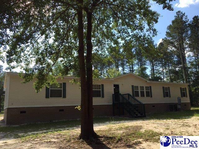 1412 Bent Tree Court, Hartsville, SC 29550 (MLS #20191086) :: RE/MAX Professionals