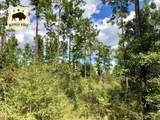 Lot 73 BR Buffalo Ridge Rd - Photo 2