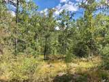 Lot 73 BR Buffalo Ridge Rd - Photo 4