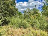 Lot 73 BR Buffalo Ridge Rd - Photo 5