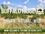 Lot 73 BR Buffalo Ridge Rd - Photo 6