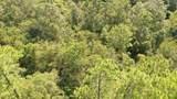 0 Longleaf Ridge - Photo 17