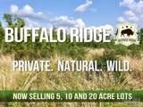 102 Buffalo Ridge Rd - Photo 1