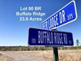 Lot 80 BR Deer Lodge Dr - Photo 1