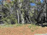5826-5846 Pamona St - Photo 3