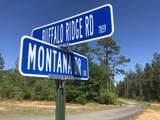 Lot 67 BR Buffalo Ridge Rd - Photo 2