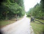 6025 County Road 266 - Photo 41