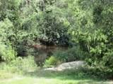 5264 Crystal Creek Dr - Photo 3