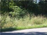 #43 Woods Rd - Photo 2