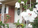 380 Clematis St - Photo 33