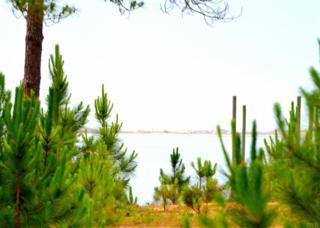 Soundside Dr, Gulf Breeze, FL 32563 (MLS #517979) :: Levin Rinke Realty