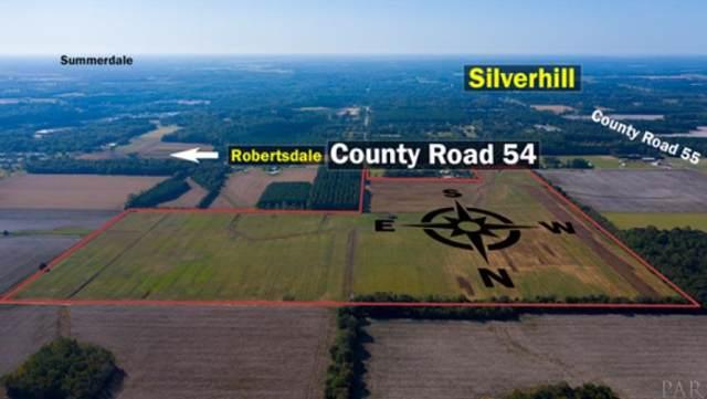 16475 County Rd 54, SILVERHILL, AL 36576 (MLS #550650) :: Levin Rinke Realty