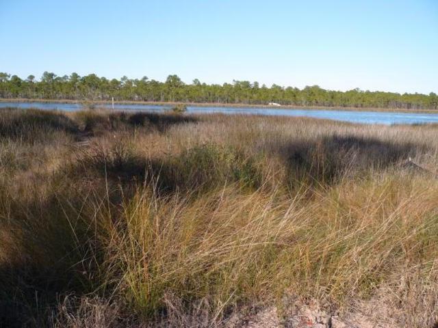 Gorham Rd, Perdido Key, FL 32507 (MLS #501444) :: Levin Rinke Realty