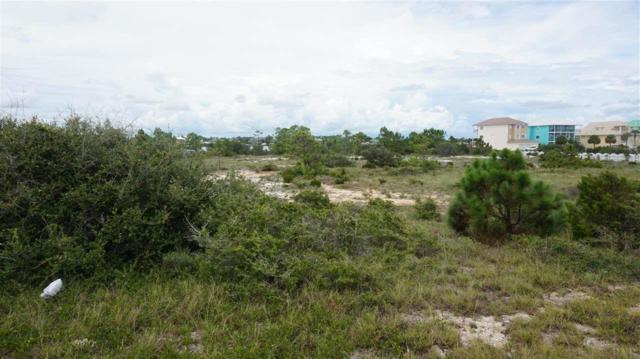 16300 E Perdido Key Dr, Perdido Key, FL 32507 (MLS #521146) :: ResortQuest Real Estate