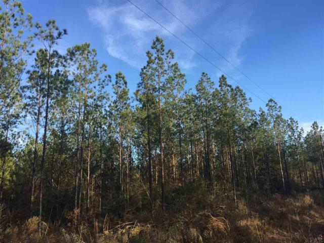 Lot 38 Ten Mile Rd, Pace, FL 32571 (MLS #529510) :: ResortQuest Real Estate