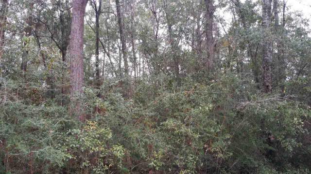 6884 -B Lonesome Pine Ln, Milton, FL 32570 (MLS #531278) :: ResortQuest Real Estate