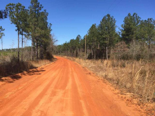 Lot 1-E Gin Rd, Pace, FL 32571 (MLS #531384) :: Levin Rinke Realty