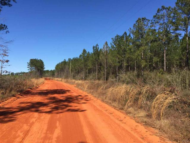 Lot 3-E Gin Rd, Pace, FL 32571 (MLS #531387) :: Levin Rinke Realty
