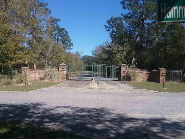 0 Terra Sombra Ct, Milton, FL 32583 (MLS #532835) :: Levin Rinke Realty