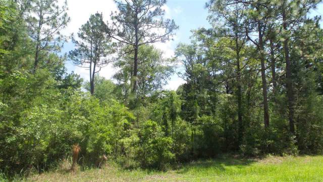 0 Deer Lake Rd, Walnut Hill, FL 32568 (MLS #537329) :: Levin Rinke Realty