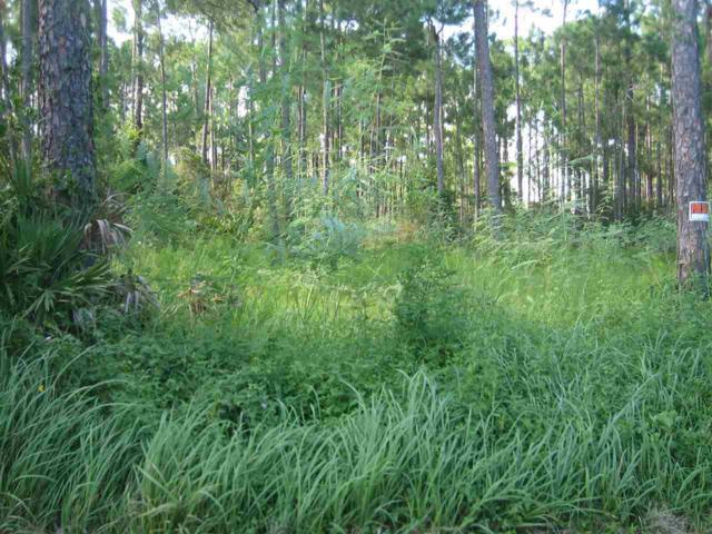 5851 Red Cedar St, Pensacola, FL 32507 (MLS #539847) :: Levin Rinke Realty