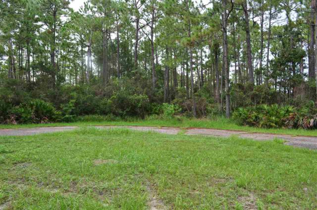 16608 North Shore Cv, Pensacola, FL 32507 (MLS #542899) :: Levin Rinke Realty