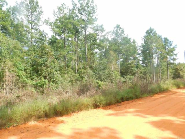 Lot B Gin Rd, Pace, FL 32571 (MLS #543540) :: Levin Rinke Realty