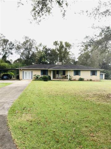 151 Daylily Rd, Cantonment, FL 32533 (MLS #544232) :: Levin Rinke Realty