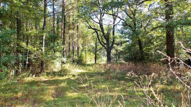 0 Bryants Landing Rd, STOCKTON, AL 36579 (MLS #544505) :: ResortQuest Real Estate