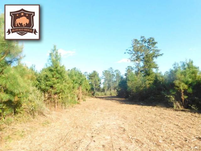Lot 12 BR Buffalo Mill Creek Rd, Pace, FL 32571 (MLS #544813) :: Levin Rinke Realty