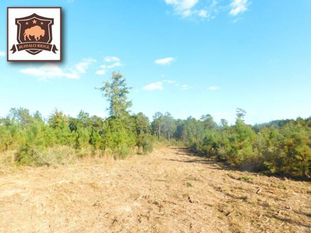 Lot 13 BR Buffalo Mill Creek Rd, Pace, FL 32571 (MLS #544820) :: Levin Rinke Realty