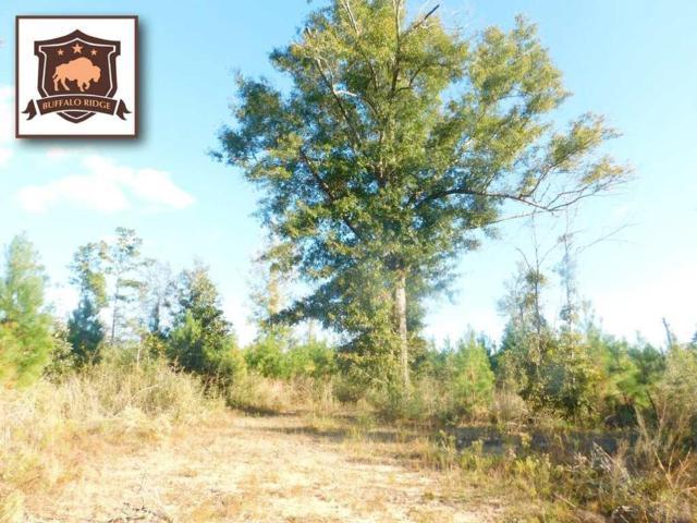 Lot 78 BR Buffalo Mill Creek Rd, Pace, FL 32571 (MLS #544836) :: Levin Rinke Realty
