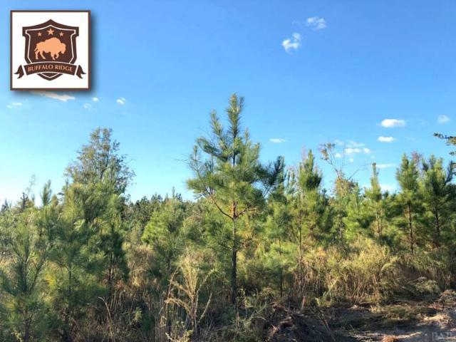 Lot 79 BR Buffalo Mill Creek Rd, Pace, FL 32571 (MLS #544846) :: Levin Rinke Realty