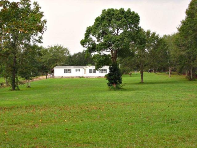 319 Crowndale Rd, Cantonment, FL 32533 (MLS #545048) :: Levin Rinke Realty