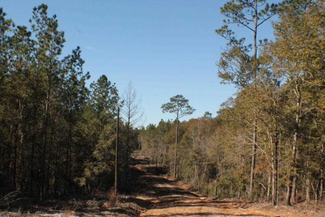 Lot 1 Forest Hills Dr, Milton, FL 32570 (MLS #546744) :: Connell & Company Realty, Inc.