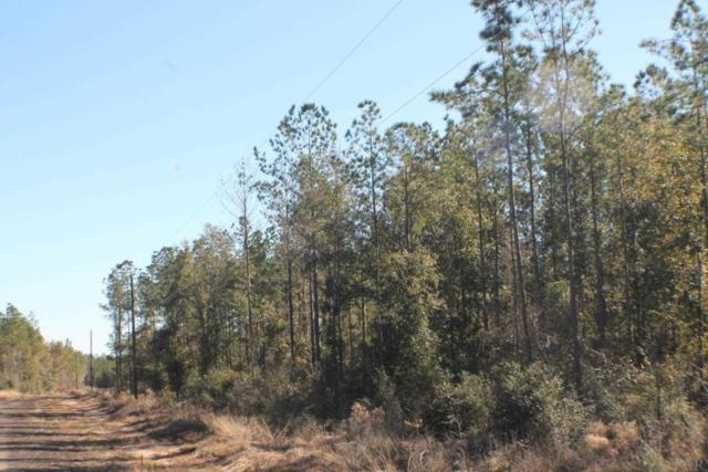 Lot 13 Forest Hills Dr, Milton, FL 32570 (MLS #546747) :: Levin Rinke Realty
