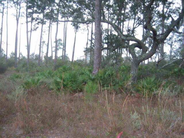 16229 Narwhal Dr, Pensacola, FL 32507 (MLS #547453) :: Levin Rinke Realty