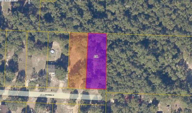 5515 Bluebird St, Milton, FL 32583 (MLS #547563) :: ResortQuest Real Estate