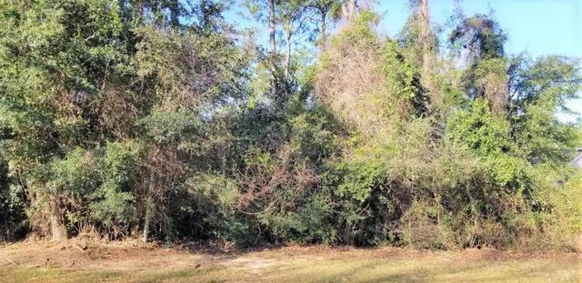 73 Crabapple Ln, Pensacola, FL 32514 (MLS #548413) :: ResortQuest Real Estate