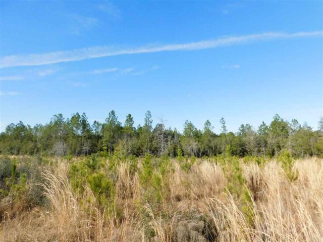 Lot 82 BR Buffalo Mill Creek Rd, Pace, FL 32571 (MLS #549488) :: Levin Rinke Realty
