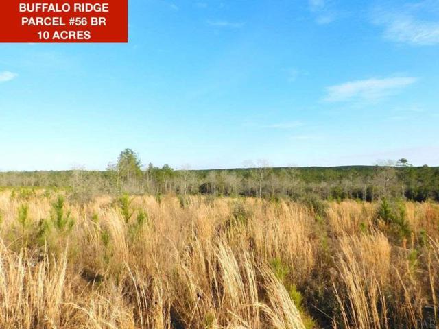 Lot 56 BR Buffalo Mill Creek Rd, Pace, FL 32571 (MLS #549491) :: Levin Rinke Realty