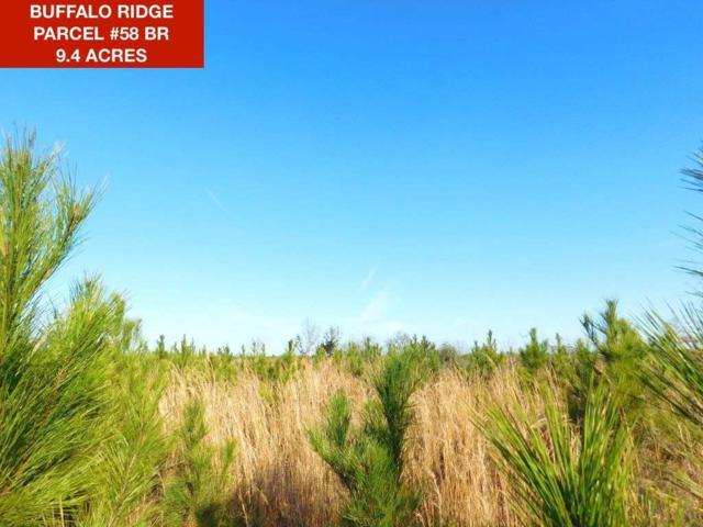 Lot 58 BR Buffalo Ridge Dr, Pace, FL 32571 (MLS #549576) :: Levin Rinke Realty