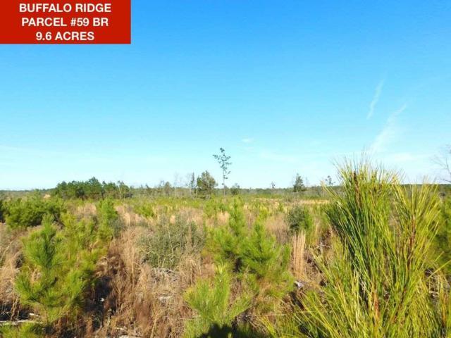 Lot 59 BR Buffalo Ridge Rd, Pace, FL 32571 (MLS #549615) :: Levin Rinke Realty