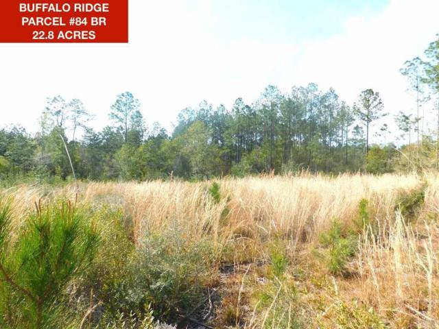 Lot 84 BR Crown Pass Dr, Pace, FL 32571 (MLS #551916) :: Levin Rinke Realty