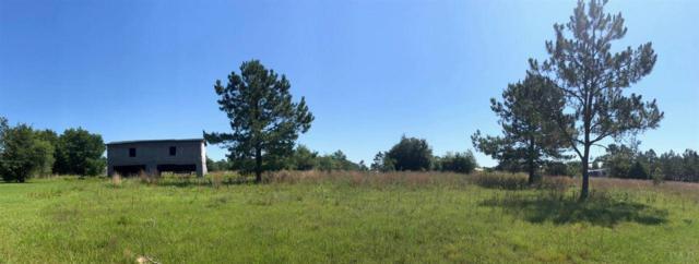 0000 Nichols Lake Rd, Milton, FL 32583 (MLS #556056) :: Levin Rinke Realty