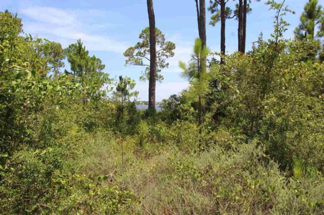 16303 Tarpon Dr, Pensacola, FL 32507 (MLS #556786) :: Levin Rinke Realty