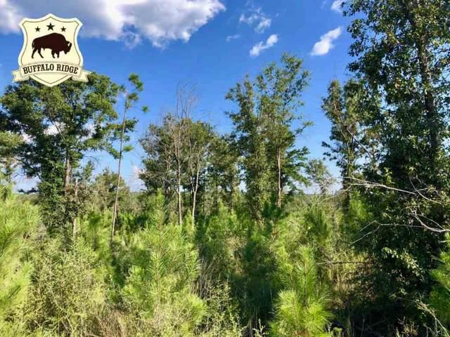Lot 59 BR Buffalo Ridge Rd, Pace, FL 32571 (MLS #561037) :: Levin Rinke Realty