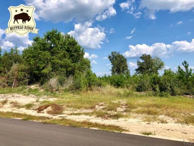 Lot 60 BR Buffalo Ridge Rd, Pace, FL 32571 (MLS #561038) :: Levin Rinke Realty